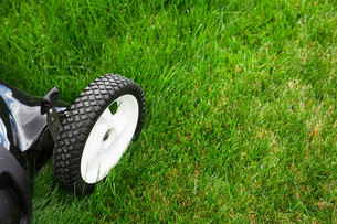Lawn mowerの写真素材 [FYI00747220]