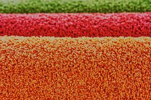 Carpetingの素材 [FYI00747222]
