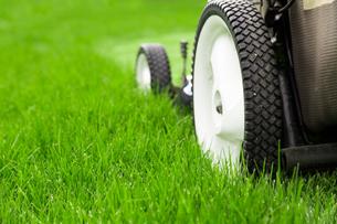 Lawn mowerの写真素材 [FYI00747230]