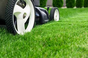 Lawn mowerの写真素材 [FYI00747231]