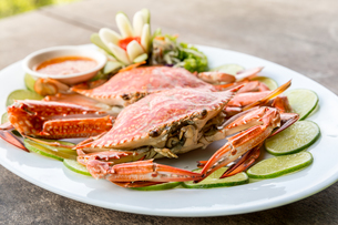 steam crab seafoodの写真素材 [FYI00748371]