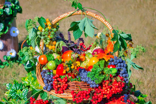 Harvest vegetables, fruits, berries sold at the fairの写真素材 [FYI00748574]