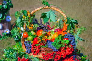 Harvest vegetables, fruits, berries sold at the fairの写真素材 [FYI00748575]