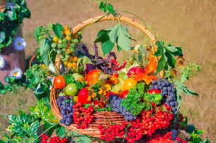 Harvest vegetables, fruits, berries sold at the fairの写真素材 [FYI00748577]