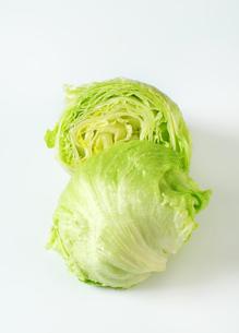 Iceberg lettuceの写真素材 [FYI00748726]