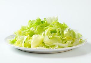 Iceberg lettuce saladの写真素材 [FYI00748735]
