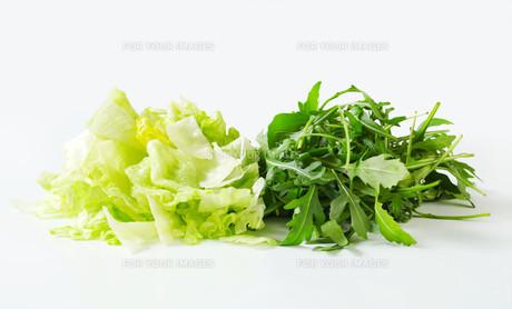 Iceberg lettuce and arugulaの写真素材 [FYI00748756]