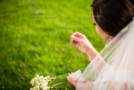 Bride on her wedding day with lucky fortune clover she has just foundの写真素材 [FYI00749142]