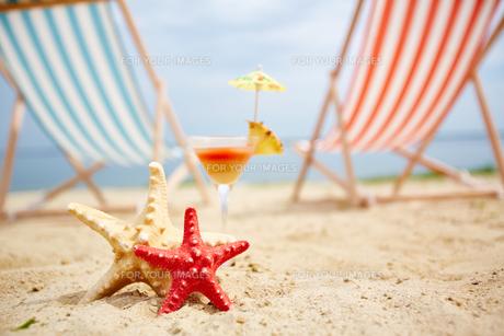 Sea stars on sandy beachの写真素材 [FYI00749837]