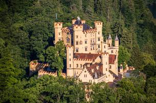 hohenschwangau castle in the alpsの素材 [FYI00750173]
