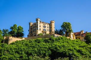 hohenschwangau castle in the alpsの素材 [FYI00750190]