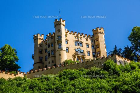 hohenschwangau castle in the alpsの素材 [FYI00750200]