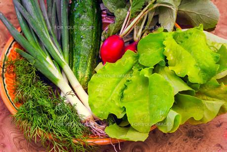 Vegetablesの写真素材 [FYI00752698]