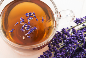 Lavender teaの写真素材 [FYI00752979]