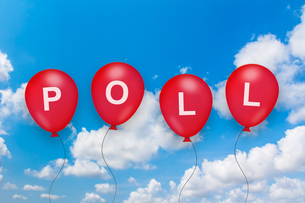 political poll text on balloonの写真素材 [FYI00752989]