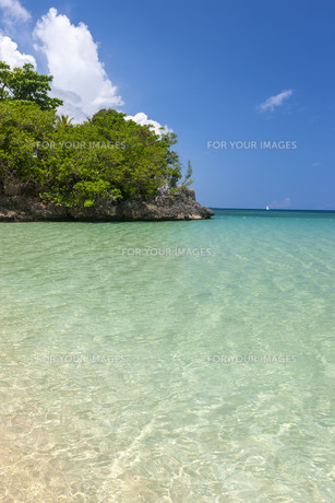 Beach on tropical island. Clear blue water and skyの写真素材 [FYI00753119]