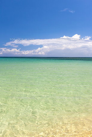 Beach on tropical island. Clear blue water and skyの写真素材 [FYI00753122]