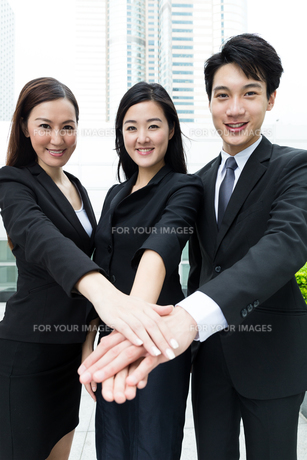 Group of business team mate work togetherの写真素材 [FYI00753913]