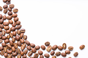 Coffee beans isolated on whiteの写真素材 [FYI00754020]