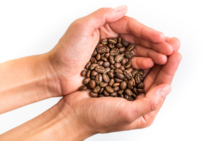 Coffee beans isolated on whiteの写真素材 [FYI00754022]
