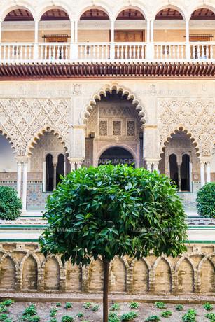 Seville Alcazar Gardenの写真素材 [FYI00754598]