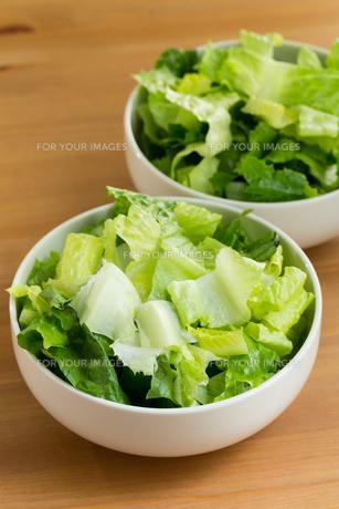 Lettuce saladの写真素材 [FYI00754792]