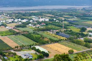 Farm from top in Tai Tungの写真素材 [FYI00754810]