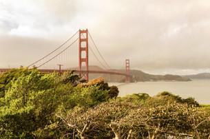 Golden Gate Bridge, San Francisco, Californiaの写真素材 [FYI00755076]