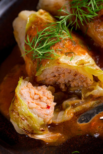 cabbage rolls out young cabbageの写真素材 [FYI00755452]