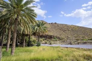 Landscape Omanの素材 [FYI00755910]