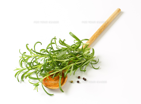 Rosemary, peppercorns and wooden spoonの写真素材 [FYI00756872]