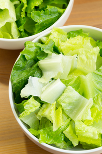Lettuce saladの写真素材 [FYI00757465]