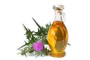 milk thistle oilの写真素材 [FYI00758095]