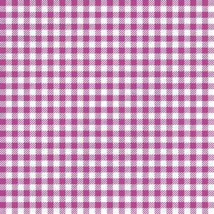 checkered table cloth backgroundの写真素材 [FYI00758169]