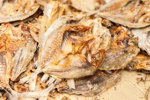 Dried fishの写真素材 [FYI00758972]