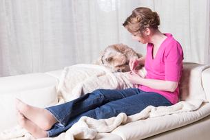 attractive woman in purple feeding small dogの写真素材 [FYI00759073]