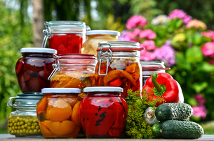Jars of pickled vegetables and fruits in the gardenの写真素材 [FYI00759942]
