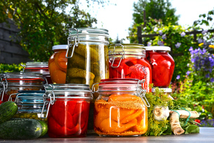 Jars of pickled vegetables and fruits in the gardenの写真素材 [FYI00759946]