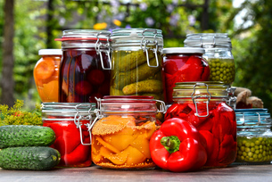 Jars of pickled vegetables and fruits in the gardenの写真素材 [FYI00759947]