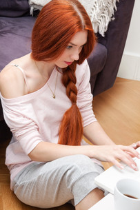 young woman with laptop leisure at homeの写真素材 [FYI00760012]