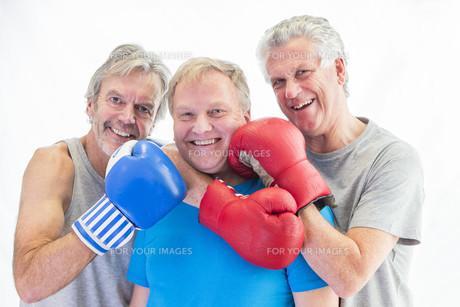 Three men posing in boxing glovesの写真素材 [FYI00762549]