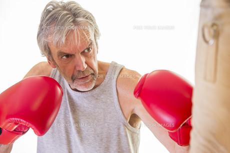Senior man using a punching bagの写真素材 [FYI00762551]