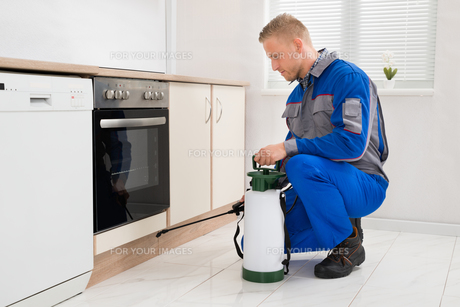 Man Spraying Pesticide In Kitchen Roomの写真素材 [FYI00763054]
