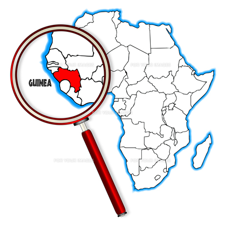 Guinea Under A Magnifying Glassの素材 [FYI00763192]