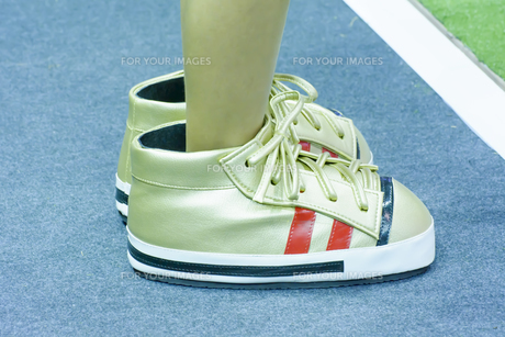 The big canvas shoes.の素材 [FYI00763734]