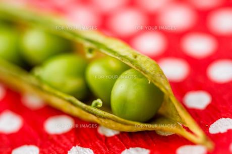 Fresh Green Peasの写真素材 [FYI00764163]