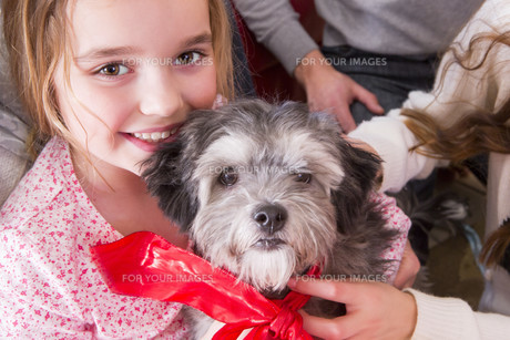 Happy Girl with new Puppyの写真素材 [FYI00764528]