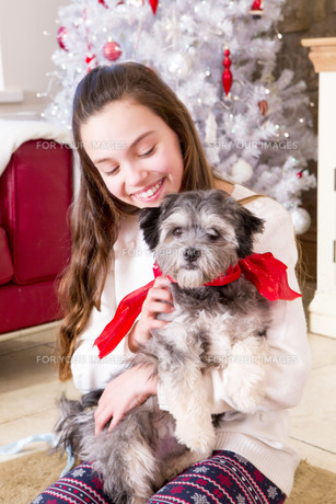 Girl with Puppy at Christmasの写真素材 [FYI00764538]