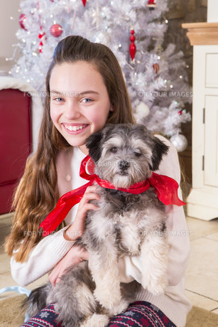 Girl holding Puppy at Christmasの写真素材 [FYI00764539]