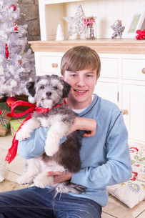 Boy with Puppy at Christmasの写真素材 [FYI00764545]